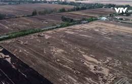 Rầm rộ tình trạng bán đất mặt ruộng ở Bạc Liêu để... tăng thu nhập