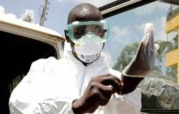 Quốc gia cuối cùng ở châu Phi xuất hiện ca mắc COVID-19