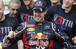 Red Bull phủ nhận khả năng tái hợp Sebastian Vettel