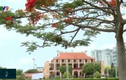 Bến Nhà Rồng – Nơi ghi dấu chặng đường cứu nước của Chủ tịch Hồ Chí Minh