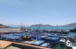 Dừng hoạt động bến tàu du lịch Cầu Đá (Nha Trang) bị quá tải trong nhiều năm