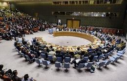 Hội đồng Bảo an LHQ nhất trí cần tiếp tục cải thiện thủ tục và phương pháp làm việc