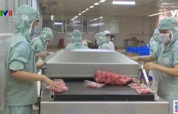 Nâng cao hiệu quả khai thác, chế biến tiêu thụ hải sản sau dịch Covid-19