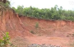 """""""Đất tặc"""" đào múc tan hoang hàng nghìn m3: Bao giờ mới chấm dứt?"""