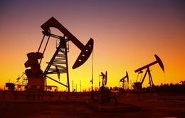 Giá dầu tăng nhẹ trước thềm cuộc họp OPEC+