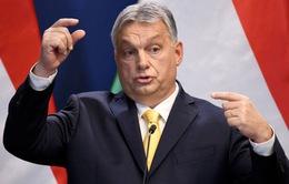 Hungary cảnh báo đợt bùng phát dịch COVID-19 thứ hai