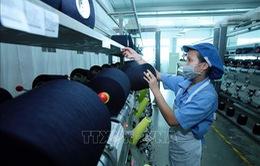 Hà Nội: Chiến dịch 10.000 việc làm vì cộng đồng