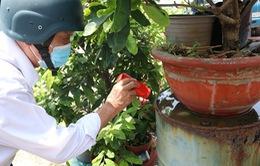 Thành phố Hồ Chí Minh: Cảnh báo dịch bệnh sốt xuất huyết vào mùa