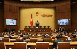 Việt Nam trở thành tấm gương cho nhiều quốc gia trong ứng phó với COVID-19