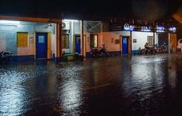 Ấn Độ thiệt hại nặng nề do siêu bão Amphan