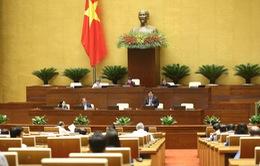Kiến nghị không đưa hộ kinh doanh vào dự thảo Luật Doanh nghiệp sửa đổi