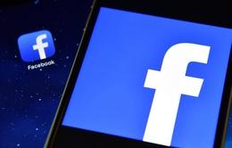 Facebook sẽ đặt cáp quang biển bao quanh châu Phi