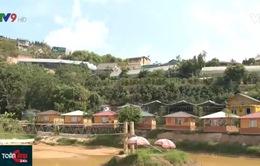 Đà Lạt: Loạn nhà nghỉ tự ý gắn biển homestay