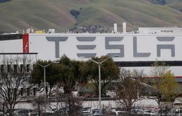 Loại pin mới của Tesla có thể thay thế ảnh hưởng của xăng dầu