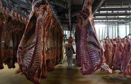 Phát hiện hàng trăm ca nhiễm COVID-19 tại các cơ sở chế biến thịt ở châu Âu