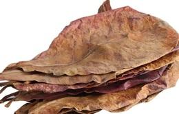 Lá bàng khô được rao bán rầm rộ, 1.000 đồng/lá