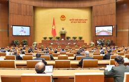 Kỳ họp thứ 9, Quốc hội khóa XIV: Thảo luận dự kiến Chương trình xây dựng luật, pháp lệnh năm 2021