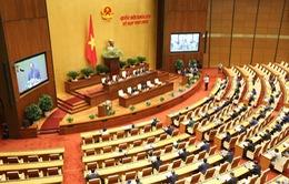 Quốc hội họp trực tuyến: Tiết kiệm chi phí nhưng giảm tương tác?