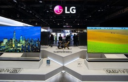 Thị trường TV OLED toàn cầu sẽ tăng trưởng chậm trong năm 2020
