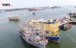 Quảng Trị: Bất cập trong việc lắp đặt giám sát hành trình cho tàu cá
