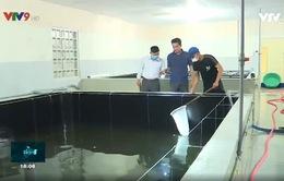 Quy hoạch vùng sản xuất thủy sản gắn với chiến lược phát triển kinh tế biển bền vững