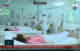 Gia tăng số ca bệnh sốt xuất huyết nặng tại Khánh Hòa