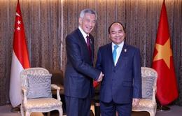 """Thủ tướng Singapore đề xuất thiết lập cơ chế """"làn xanh"""" với Việt Nam"""