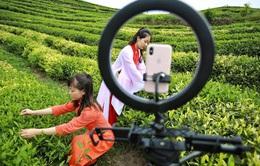 Trung Quốc: Bùng nổ số lượng người dùng dịch vụ truyền phát trực tiếp
