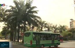 TP.HCM: Xe buýt được phép hoạt động trở lại