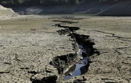 """""""Phục hồi xanh"""" có thể giúp hồi sinh nền kinh tế và chống biến đổi khí hậu"""