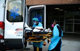 Mỹ dự báo số ca tử vong do COVID-19 tăng mạnh sau khi nới lỏng giãn cách xã hội