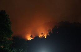 Đà Nẵng liên tục cảnh báo cháy rừng