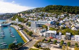 Dịch COVID-19: New Zealand, Australia sẽ triển khai du lịch độc quyền giữa hai nước