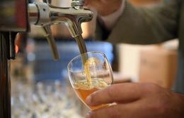 Pháp phải đổ 10 triệu lít bia xuống cống vì COVID-19