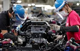 Nhật Bản hỗ trợ 15 doanh nghiệp đưa nhà máy tới Việt Nam