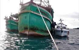 Bắt giữ hai tàu cá có hành vi mua bán, vận chuyển dầu D.O trái phép