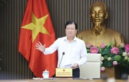Phó Thủ tướng Trịnh Đình Dũng: Không để phát triển nông thôn mới chỉ là hình thức