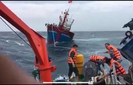 Cứu nạn tàu cá bị gãy trục hộp số trong sóng to