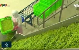 Giải bài toán giá cả và đầu ra cho nông sản