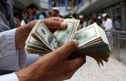 Đồng USD có thể sẽ sụp đổ vào năm 2021