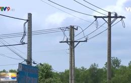 Bình Dương: Lắp điện cho gần 50 hộ dân