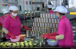 Chế biến sâu – giải pháp nâng tầm nông sản Việt