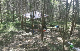 """Vụ bé trai 5 tuổi tử vong trong rừng: Khởi tố nam sinh """"ảo game"""" tội giết người"""