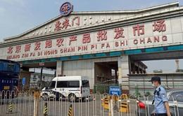 Ổ dịch mới bùng phát tại Bắc Kinh có thể bắt nguồn từ Nam Á