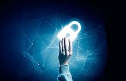 Làm sao để đảm bảo an toàn dữ liệu doanh nghiệp hậu COVID-19?