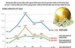 Infographic: FDI toàn cầu giảm xuống dưới 1.000 tỷ USD trong năm 2020