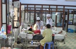 Cảnh báo: Số ca mắc sốt xuất huyết đang gia tăng