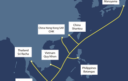 Viettel triển khai tuyến cáp quang biển dung lượng băng thông lớn nhất Việt Nam