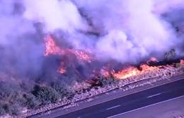 Mỹ: Hàng nghìn người sơ tán do cháy rừng lan rộng tại bang Arizona