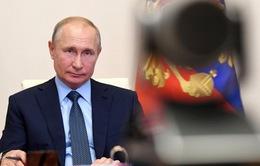 Tổng thống Nga Vladimir Putin cân nhắc tái tranh cử
